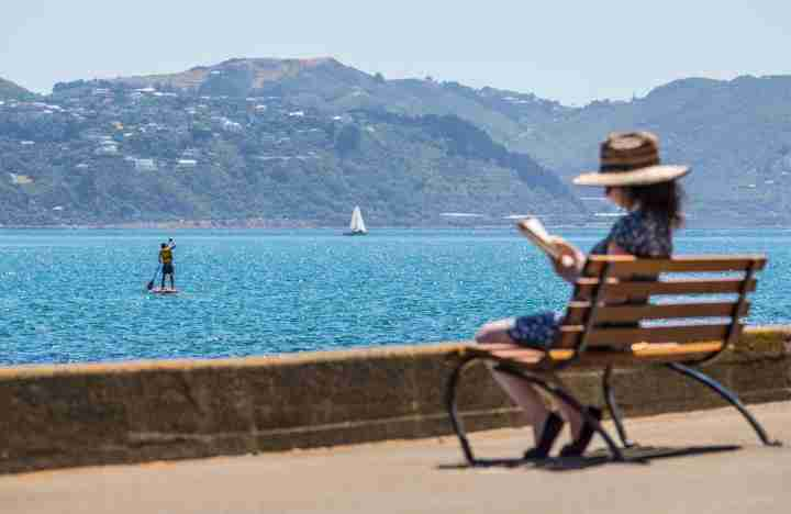 Oriental Bay seat person reading paddleboarder